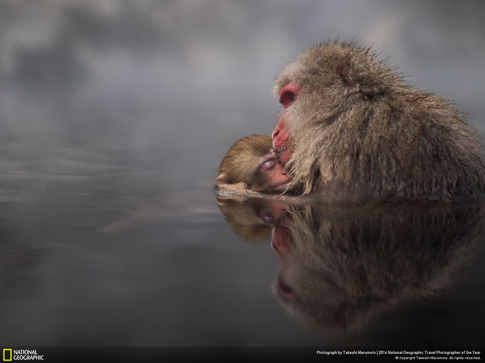 Saptamana 2 Concursul National Geographic Travel Photographer of the Year 2016
