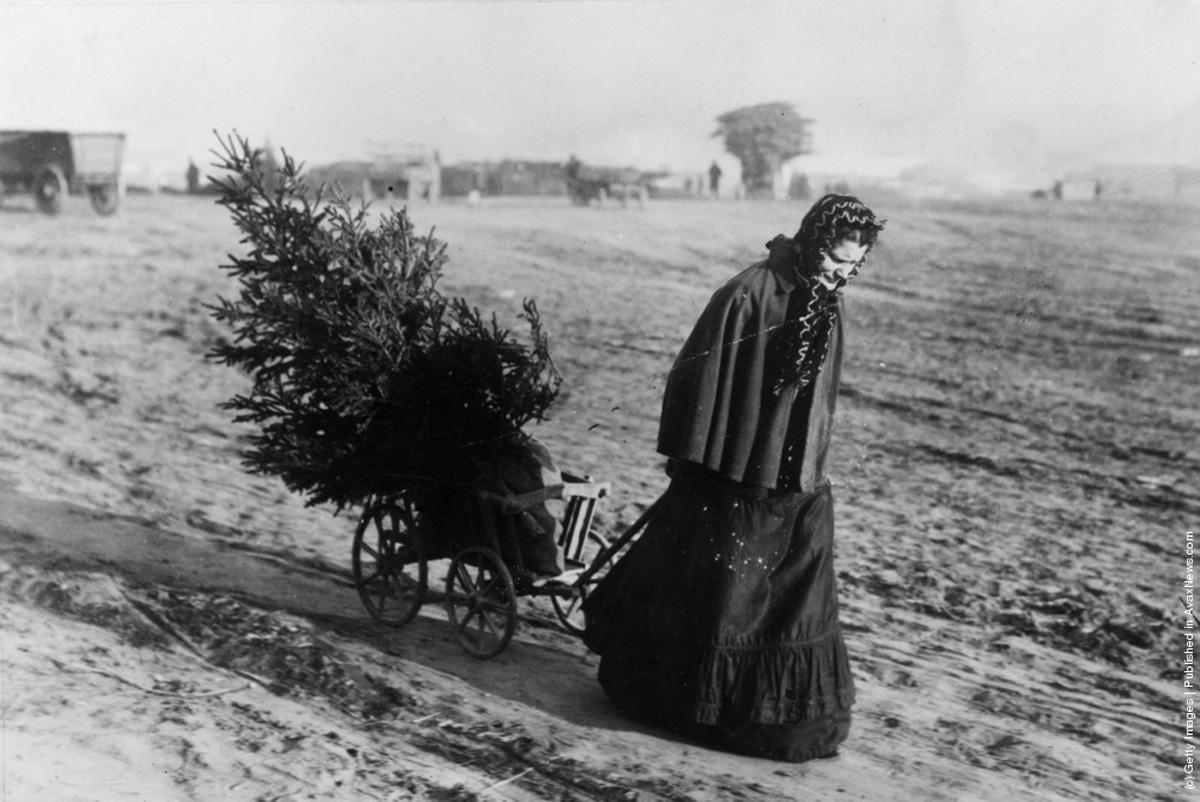 """1895-"""" O femeie se intorce acasă de la piată cu un pom de Crăciun ."""" ( Otto Haeckel/Getty Images)."""