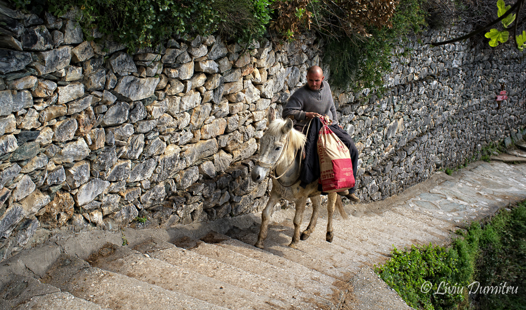 Liviu Dumitru Athos 11 Aprilie 2012