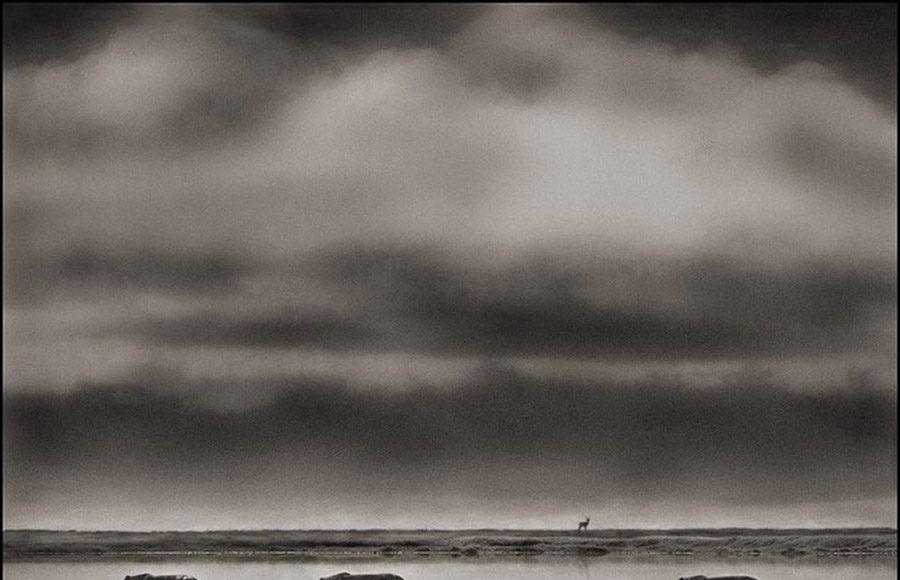 Nick Brandt Africa 091